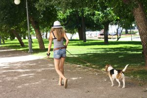 Were You The One Walking Your Dog Last Week In 100 Degree Temps?